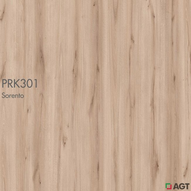 PRK301